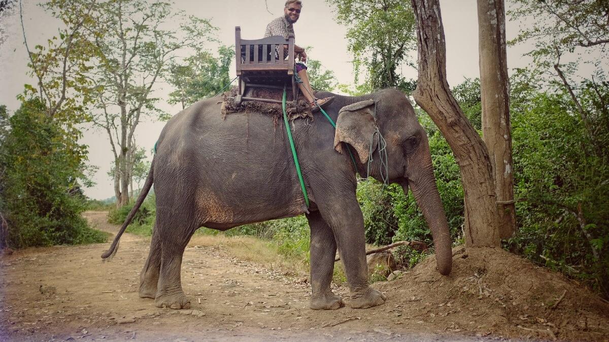 Videonauts Sabbatical Laos Luang Prabang Elephant Village II