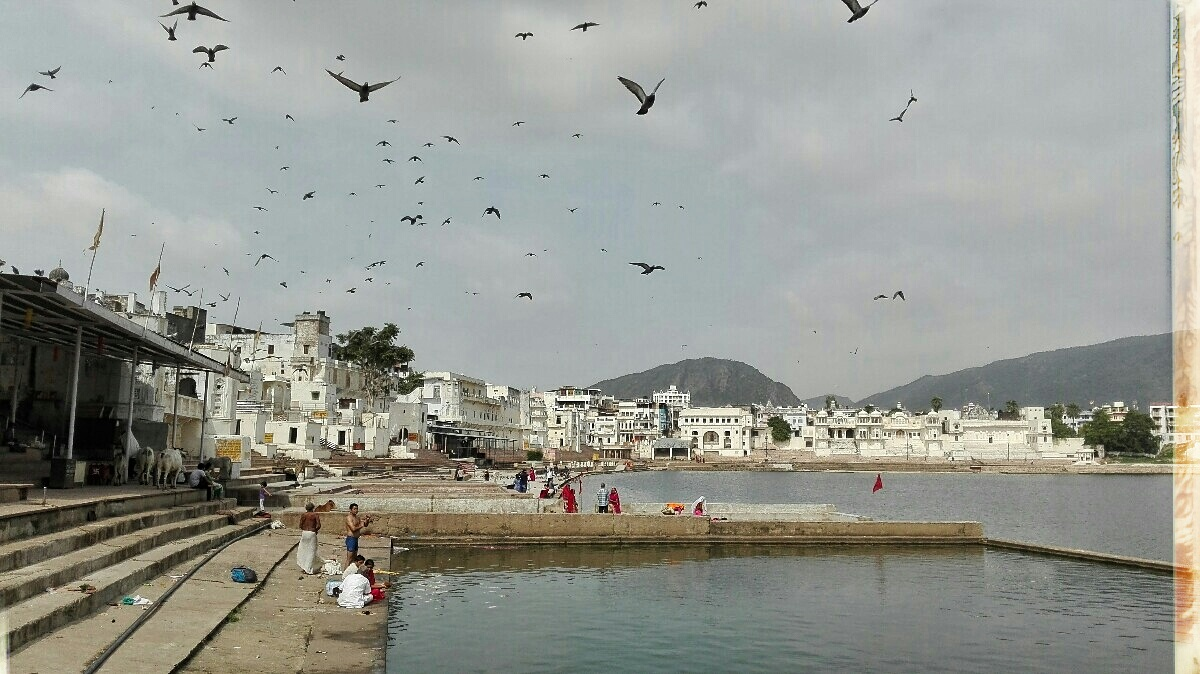 Videonauts backpacking Indien Pushkar