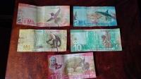 Videonauts Costa Rica money bills backpacking