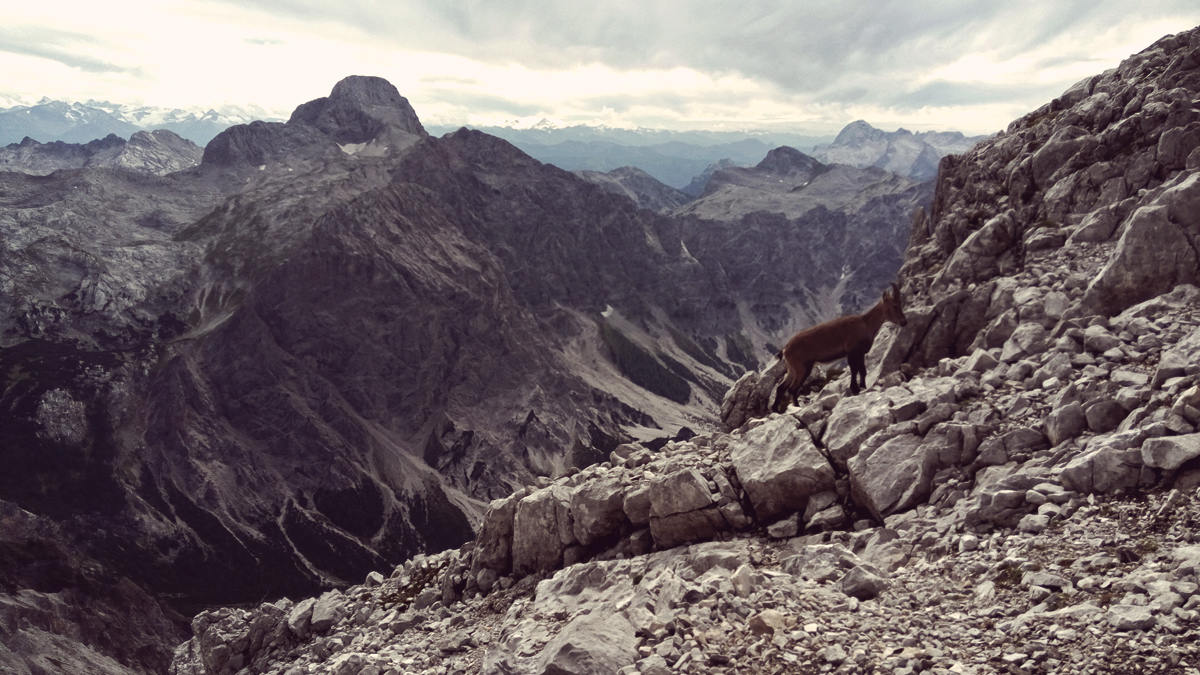 Berge, Wandern, Watzmann Überschreitung