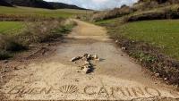 November_Camino11