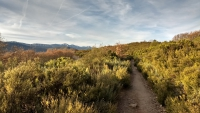 November_Camino32
