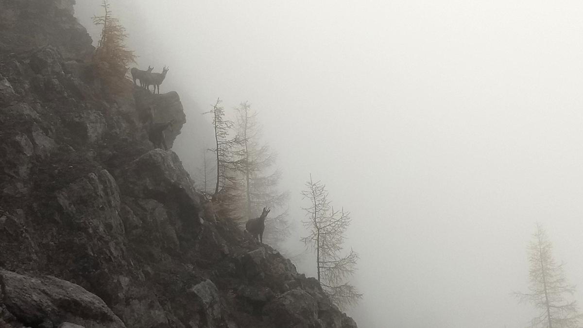 Zugspitze_09