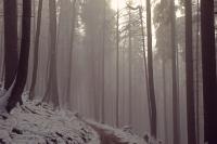 Videonauts Wallberg Winter is coming Trekking