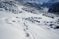 Videonauts Nepal Annapurna Circuit Trekking Schnee Leopard backpacking