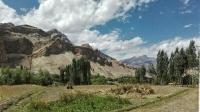 Videonauts backpacking Indien Ladakh road