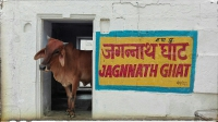 Videonauts backpacking Indien Pushkar Ghat