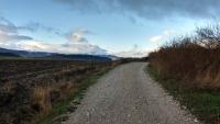 November_Camino5
